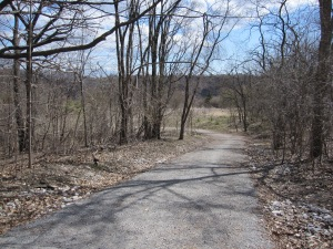 The Bayview Trail Into Crothers Woods